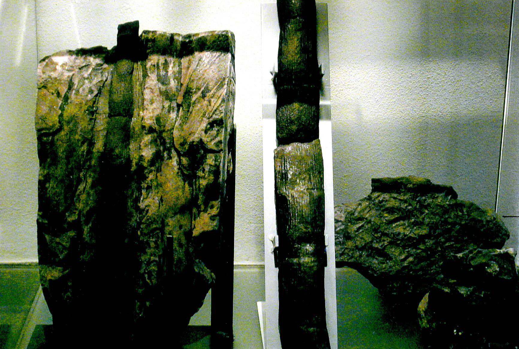 Karbon - Die Sammlung Reinhard Lippes 3